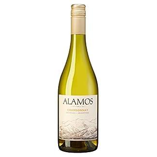 Catena-Zapata-Alamos-Chardonnay-Weiwein-trocken-Mendoza-Argentinien-2015-13-Vol-075l