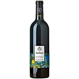 Weingut-Gesellmann-Rotwein-aus-sterreich-Weinpaket-Blaufrnkisch-Creitzer-Reserve-AT-BIO-402-2017-6-x-075-Liter