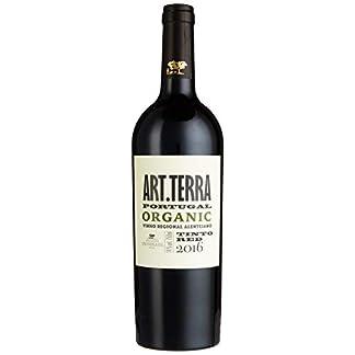 Herdade-de-So-Miguel-Alexandre-Relvas-ARTTerra-Organic-Vinho-Regional-Alentejano-IGP-1-x-075-l