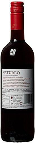 Torres-Natureo-Free-Tinto-Peneds-20162017-Miguel-Syrah-Feinherb-6-x-075-l