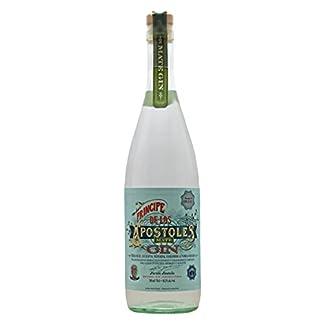 Prncipe-de-los-Apstoles-Mate-Gin-1-x-07l-Premium-New-Western-Dry-Gin-auergewhnlicher-argentinischer-Gin-Mate-Eukalyptus-Grapefruitschale-Alkoholgehalt-von-405