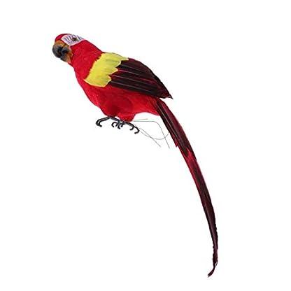 EBTOYS-knstlichen-Birds-lebensecht-gefiederten-Vgel-Weihnachten-Modell-Baum-lebensecht-gefiederten-Vgel-Craft-Parrot-Rot