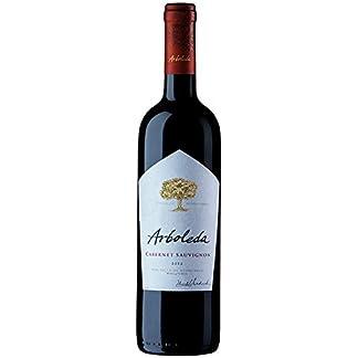 Arboleda-Rotwein-aus-Chile-Weinpaket-Cabernet-Sauvignon-2016-6-x-075-Liter