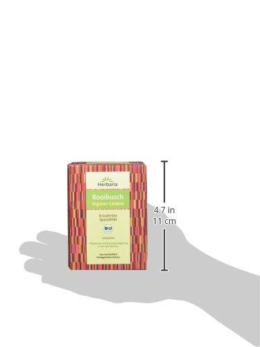 Herbaria-Rooibusch-Ingwer-Lemon-15FB-30g-1er-Pack-1-x-30-g-Packung-Bio