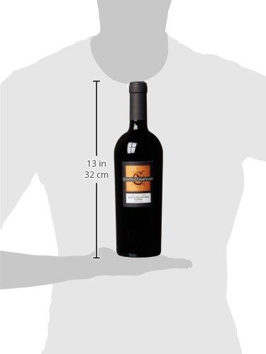 Conte-di-Campiano-Salice-Salentino-Riserva-DOC-20092011-trocken-1-x-075-l