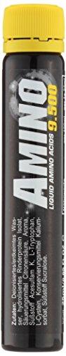 All Stars Amino 9500 Liquid – 18 x 25 ml Fläschchen, Orange, 1er Pack (1 x 450 ml)