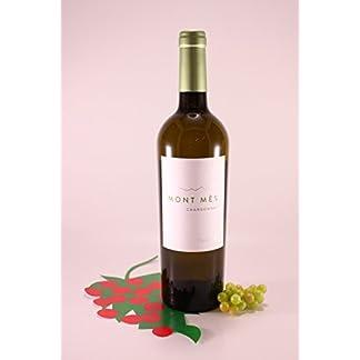 Chardonnay-Mont-Ms-Sommerwein-2017-Castelfeder-Kellerei