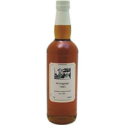 Armagnac-1993-Jahrgang-Flasche-700ml