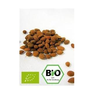 Bio-Aprikosenkerne-bitter-Qualittextra-herb-1kg-hoher-Bitteranteil-naturbelassen-extra-herb-wenig-Bruchanteil-ungeschwefelt-aus-kontrolliert-biologischem-Anbau-ohne-Pestizide-Saatgut