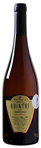 WEINVORTEIL-6-Fl-Indomita-Quintus-Chardonnay-Gran-Reserva-Casablanca-Valley-Weiwein-aus-Chile-trocken