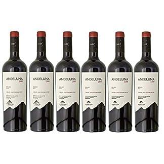 Andeluna-Cellars-Rotwein-aus-Argentinien-Weinpaket-Malbec-Andeluna-1300-2017-6-x-075-Liter