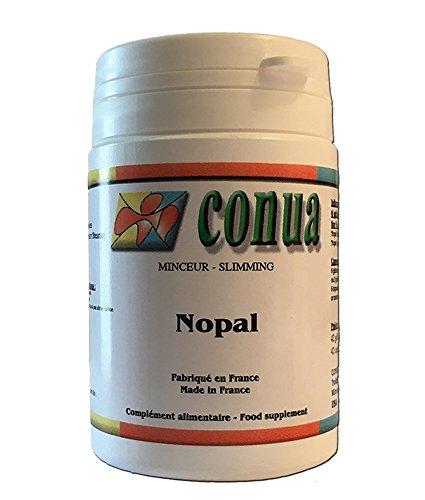Nopal Blatt pulverform, die natürliche Appetit Moderator vegetarische Kapsel 500 mg (Opuntia ficus indica) geringe Größe sehr bequem in einer Tasche oder Handtasche zu setzen.