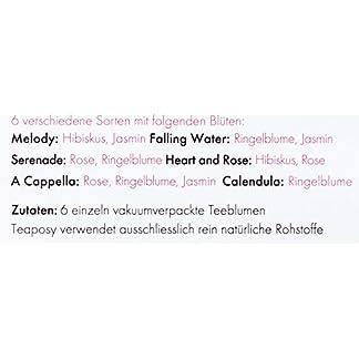 Feelino-Edle-6er-Mischbox-Teeblumen-Medley-green-in-toller-Probier-und-Geschenkbox-mit-6-verschiedenen-Grntee-Teerosen-einzeln-vakuumverpackt-1er-Pack
