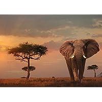 Ravensburger-15159-Masai-Mara-Puzzle-Foto-und-Landschaft-1000-Teile