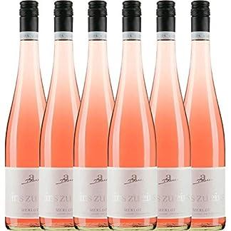 VINELLO-6er-Weinpaket-Roswein-Merlot-Ros-eins-zu-eins-feinherb-2018-A-Diehl-mit-Weinausgieer-halbtrockener-Ros-deutscher-Sommerwein-aus-der-Pfalz-6-x-075-Liter