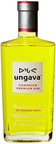 Ungava-Canadian-Premium-Gin-1-x-07-l