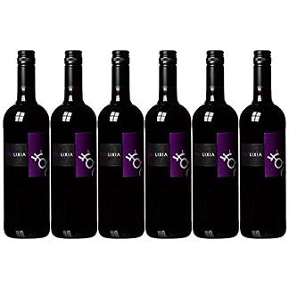 Bodegas-Gallegas-Vina-Lixia-tinto-6-x-075-l