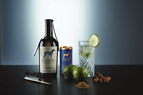Windspiel-Genusspakete-Windspiel-Premium-Gins-Tonic-als-Geschenk-und-Genussmomente