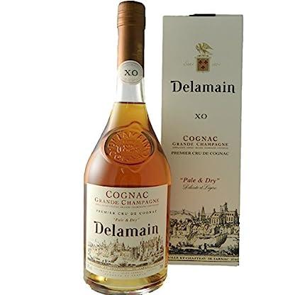 Delamain-XO-Cognac-07l-40