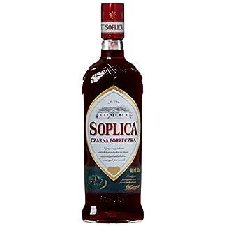 Soplica-JohannisbeereCzarna-Porzeczka-aus-Polen-1-x-05-l