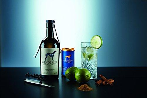 Windspiel-Manufaktur-Premium-Gin-1-x-05-l