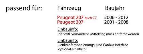 Autoradio-Radio-Pioneer-MVH-A100V-2DIN-USB-Touch-TFT-Einbauzubehr-Einbauset-fr-Peugeot-207-307-JUST-SOUND-best-choice-for-caraudio