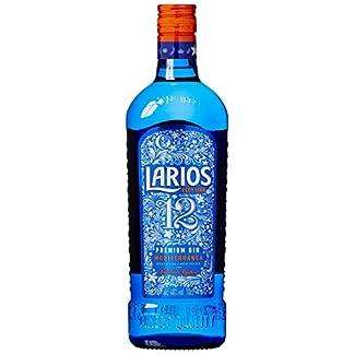 Larios-12-Gin-1-x-07-l