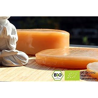 Orginal-Bio-Kombucha-Getrnk-mit-Premium-Teepilz-Die-Kombucha-Kultur-kann-immer-wieder-verwendet-werden-und-es-bilden-sich-neue-Teepilze-sodass-Sie-immer-mehr-Kombucha-herstellen-knnen-inkl-44-seitigem