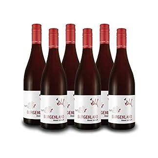 Zahel-Blauer-Zweigelt-Burgenland-sterreich-Vorteilspaket-6-Fl-Rotwein