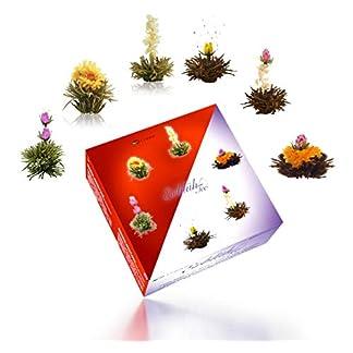 Creano-Teeblumen-Mix-Erblhtee-in-edler-Geschenkbox-Weier-Schwarzer-Tee-6-Verschiedene-Sorten-Teerosen