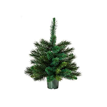 Butlers-Tree-of-The-Month-Baum-60-cm