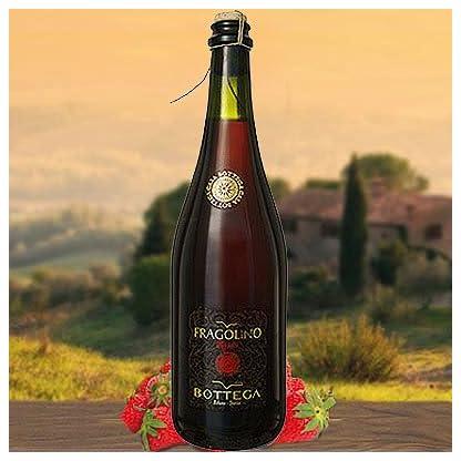 Fragolino-Rosso-Frizzante-Bottega-Bottega-SpA