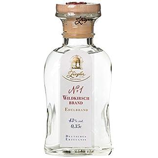 Ziegler-Wildkirsche-Nr-1-1-x-035-l