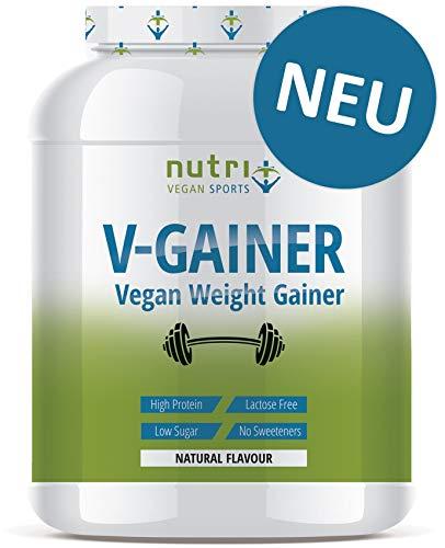 WEIGHT GAINER Neutral ohne Süßstoff & Zucker | V-GAINER 2 kg | Masseaufbau & Zunehmen | ohne Maltodextrin & Zusatzstoffe | 2000g vegan | 36,2% Eiweiß | hergestellt in Deutschland