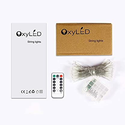 OxyLED-Litcher-Outdoor-Garten-Lichterketten
