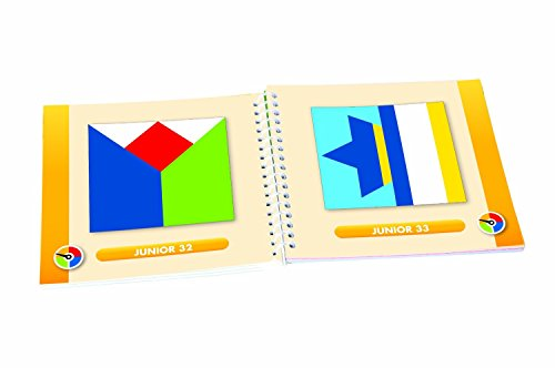 Smart-Games-SG-090-Color-Code