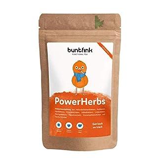 PowerHerbs-Superfood-Tee-mit-Salbei-Ingwer-Goji-Hnafbltter-Zitrone-100-natrlicher-Krutertee-aus-Deutschland-60g-loser-Tee-