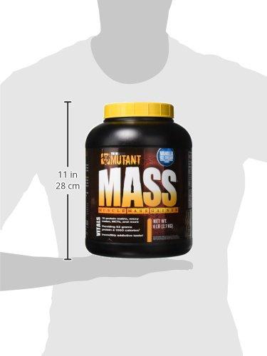 Mutant Mass – Vanilla – 2200g, 1er Pack (1 x 2.2 kg)