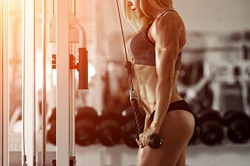 Acetyl L-Carnitine abnehmen Muskelaufbau: 120 Tabletten 100% Acetyl L-Carnitine – Abnehmen Tabletten – Muskelaufbau – Garantiert Glutenfrei
