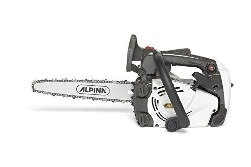 Alpina-Benzin-Kettensge