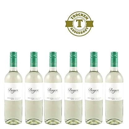 Weiwein-Weingut-Bayer-Erbhof-Grner-Veltliner-Classic-trocken-6x075l