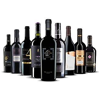 Primitivo-Genieer-Paket-9-exklusive-Rotweine-aus-Italien-9-x-075-l