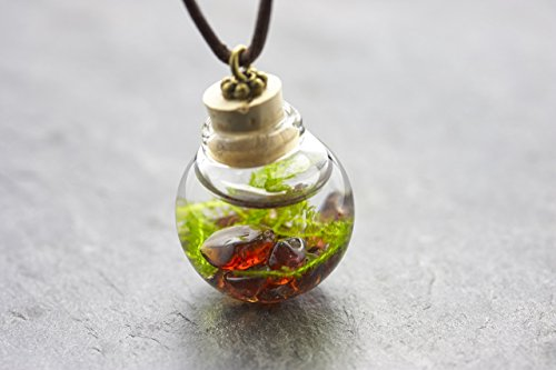 Unterwasserwelt Moos Granat echte Wasserpflanze Kette