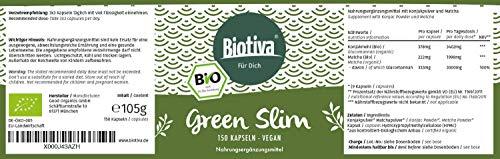 Bio-Sättigungskapseln GREEN SLIM (60 Kapseln, Bio)│Sensation: Bio-Appetithemmer als Diät-Unterstützung und zum Abnehmen I 100% Bio – 100% Vegan | Abnehm-Wirkung wissenschaftlich bestätigt!