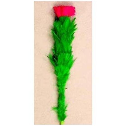 D-Robbins-blhende-Blume-Zaubertricks
