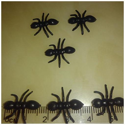 TOYMYTOY-Tier-Ameisen-Figur-Spielzeug-Tierfiguren-Simulierte-Insekt-Streich-Spielzeug-Halloween-Party-50-Stcke