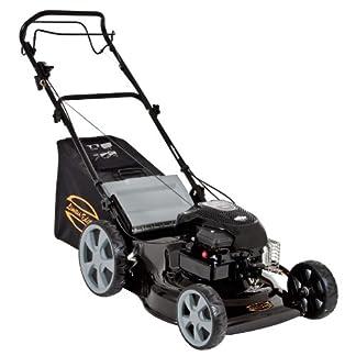 Einhell-Benzin-Rasenmher-LE-PM-2014-Limited-Edition-19-kW-46cm-Schnittbreite-6-fache-Schnitthhenverstellung-Radantrieb-Highwheeler