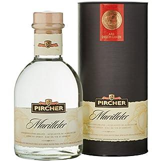 Pircher-Marilleler-Aprikosen-1-x-07-l