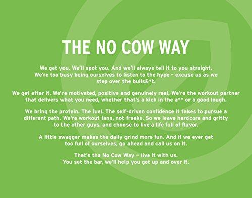 D's Naturals No Cow Bar Blueberry Cobbler (Vegan), 1er Pack (1 x 720 g)