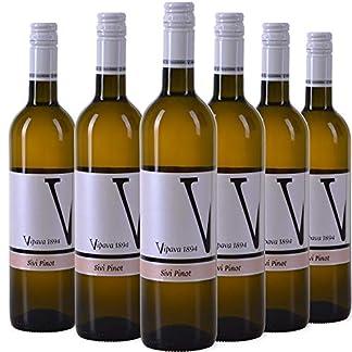 VIPAVA-1894-Weiwein-6-x-075-l-GRAUBURGUNDER-Pinot-Gris-Sivi-Pinot-2018-von-Hand-gelesener-trockener-Weiwein